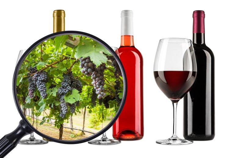 opprinnelsesland-vin-gen